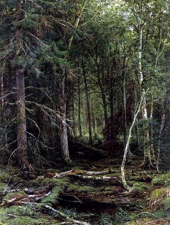 Описание картины Ивана Шишкина «Лесная глушь»