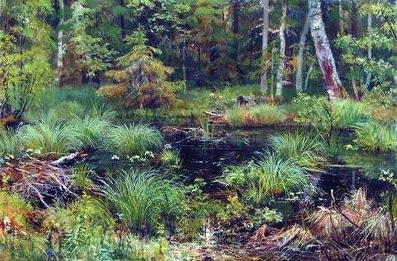 Описание картины Ивана Шишкина «Родник в лесу»