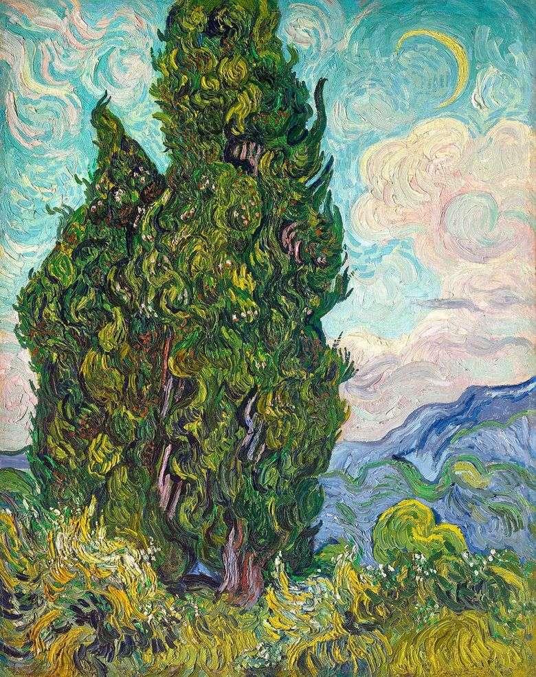Описание картины Винсента Ван Гога «Кипарисы»