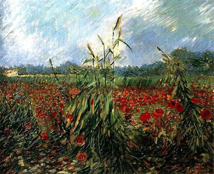 Описание картины Винсента Ван Гога «Маковые поля»