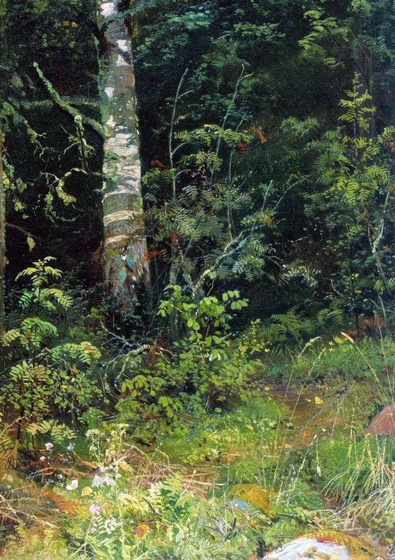 Описание картины Ивана Ивановича Шишкина «Береза и рябинки»