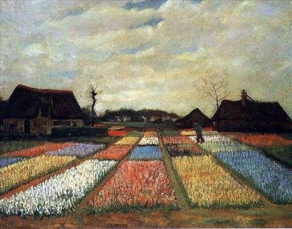 Описание картины Винсента Ван Гога «Поля тюльпанов»