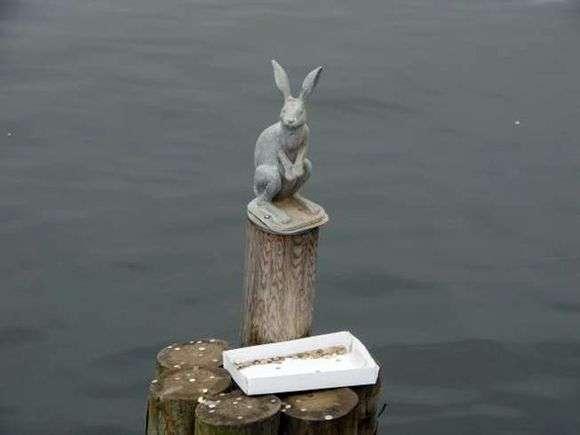 Описание памятника зайцу в Санкт Петербурге