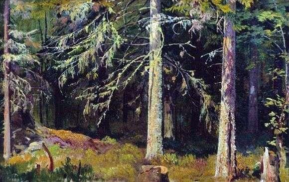 Описание картины Ивана Шишкина «Еловый лес»