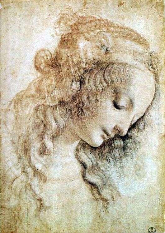 Описание картины Леонардо да Винчи «Голова женщины»