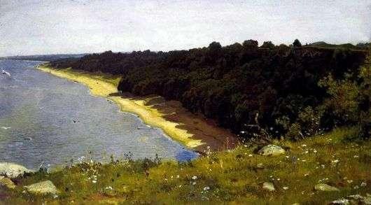 Описание картины Ивана Шишкина «По берегу моря»
