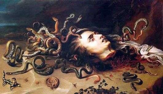Описание картины Питера Рубенса «Голова медузы»
