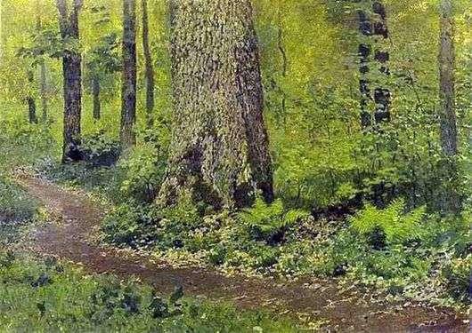Описание картины Исаака Ильича Левитана «Тропинка в лиственном лесу. Папоротники»