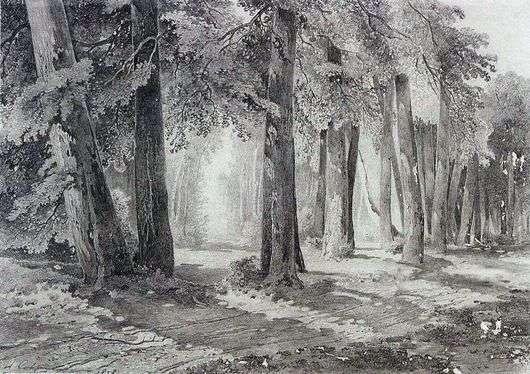 Описание картины Алексея Саврасова «В парке»