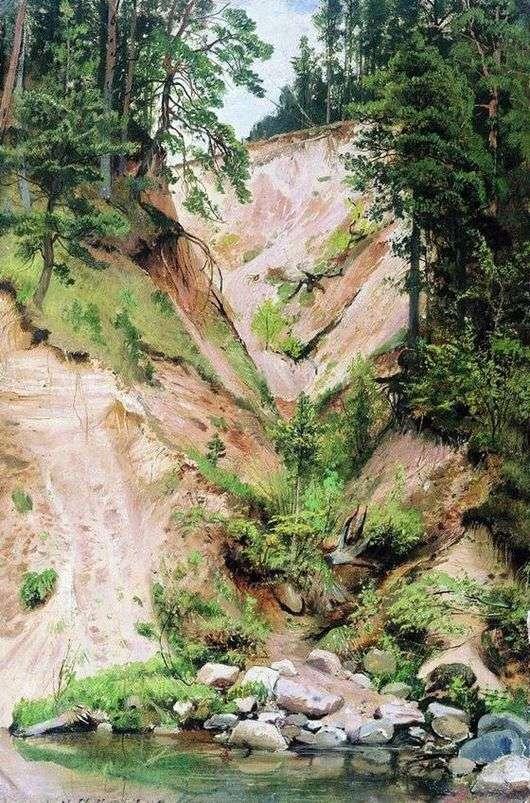 Описание картины Ивана Шишкина «Обрыв»