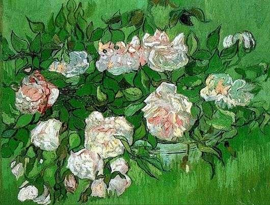 Описание картины Винсента ван Гога «Розовые розы»
