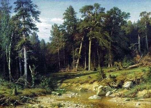 Описание картины Ивана Шишкина «Сосновый бор. Мачтовый лес в Вятской губернии»