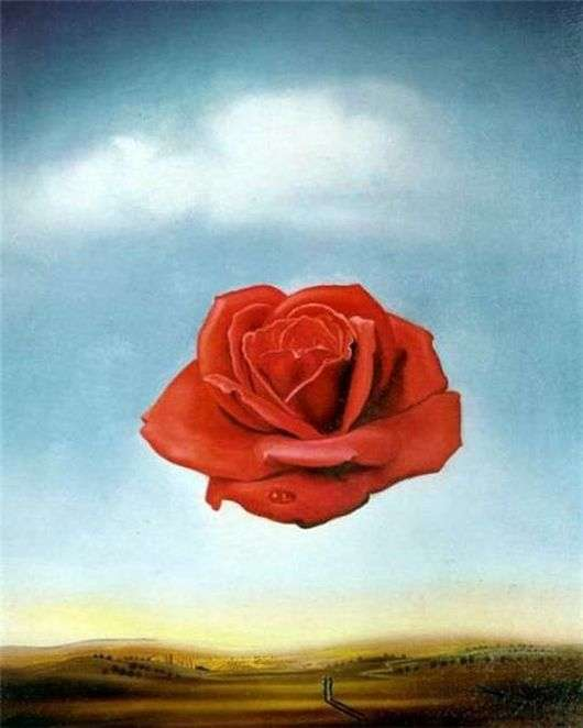 Описание картины Сальвадора Дали «Цветок» («Медитативная роза»)