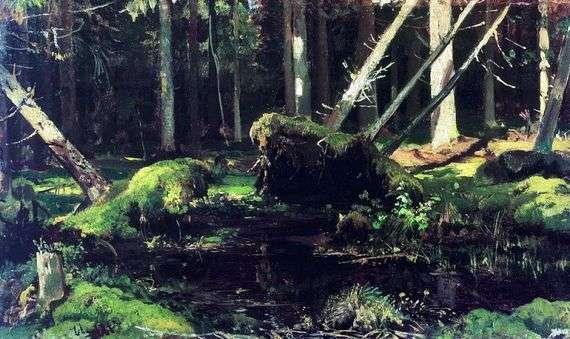 Описание картины Ивана Шишкина «Бурелом»