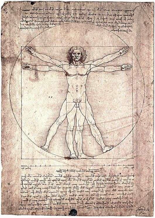 Описание картины Леонардо да Винчи «Витрувианский человек»