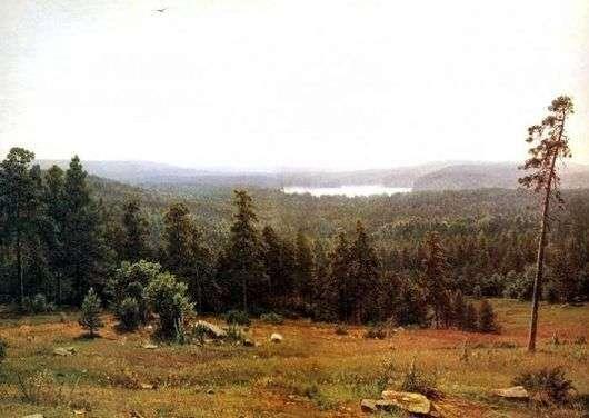Описание картины Ивана Шишкина «Лесные дали»